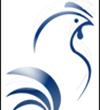 تمدید مهلت ارسال مقاله به کنگره بینالمللی دامپزشکی طیور