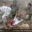 عاملین قتل عام حیات وحش لرستان دستگیر و روانه زندان شدند
