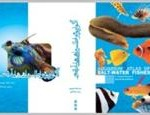 آکواریوم و اطلس ماهی های آب شور