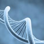 ثبت سه ژن باکتریایی در بانک ژن جهانی توسط محققین دانشکده دامپزشکی گرمسار